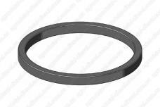 Кольцо уплотнительное задней крышки ТНВД 07456 Spaco Diesel
