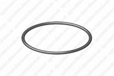 Кольцо уплотнительное крышки подшипника (75х3) 1410210046 Bosch