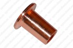 Термошайба медная (D16хD7x17.3) F00ZW00003 Bosch